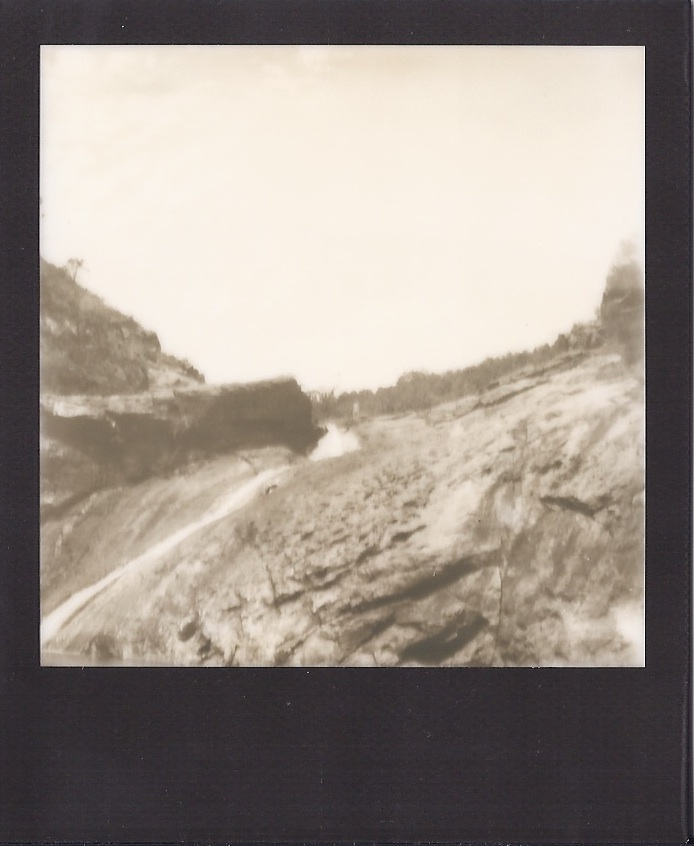 serpentine polaroidsc