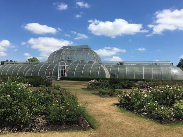 Kew Gardens 10 Palm House Rose Garden