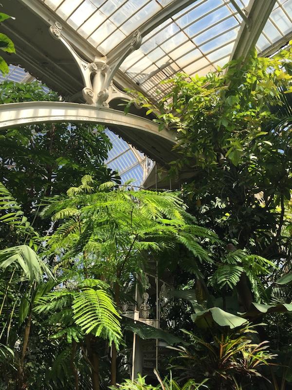 Kew Gardens 16 Palm House 3